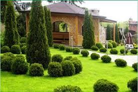 Декоративное озеленение участка – практичность и привлекательность