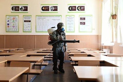 Школьникам разрешили сдавать ЕГЭ без масок и перчаток
