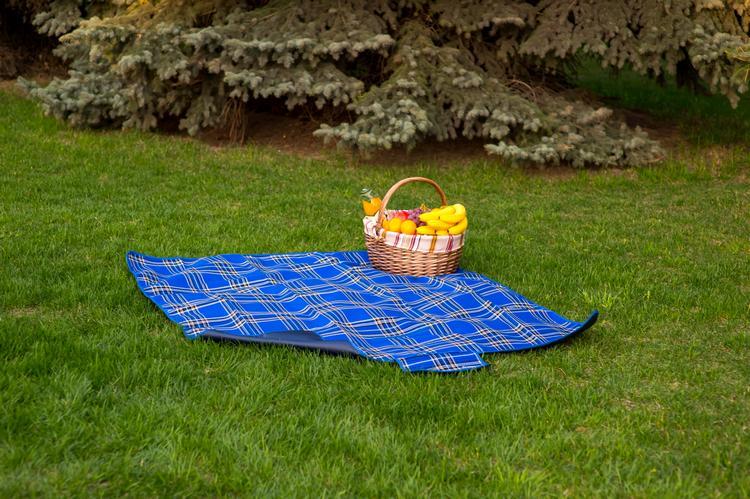 Что необходимо для организации пикника