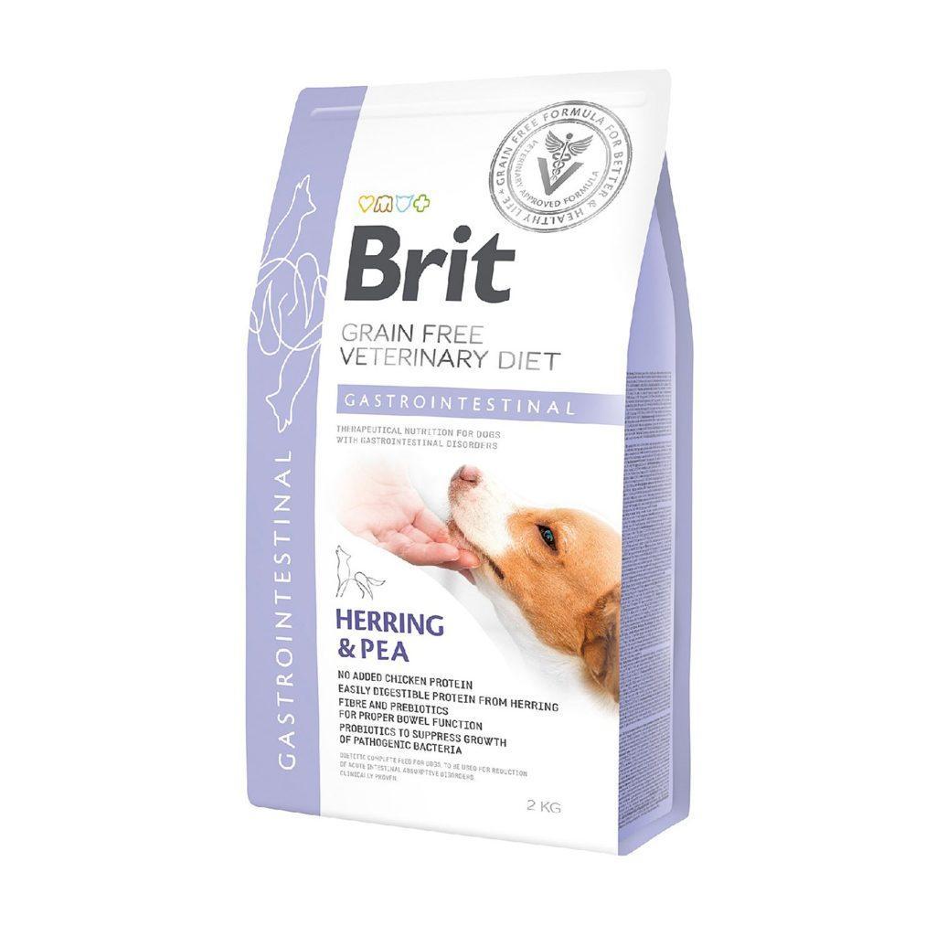 Практичность приобретения качественного корма для собак у надежного поставщика